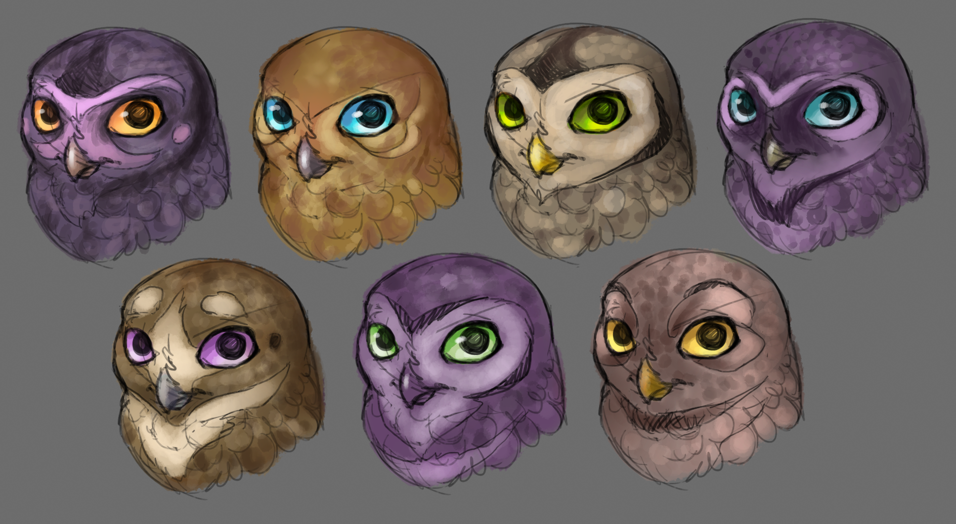 Owl Head Color And Pattern Studies By Emily Dillhunt